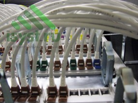 Маркированный шкаф СКС (проект, установка, обслуживание СКС, ВОЛС, ЛВС)